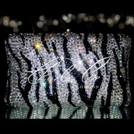 Zebra Print Crystal Hardcase Clutch Bag